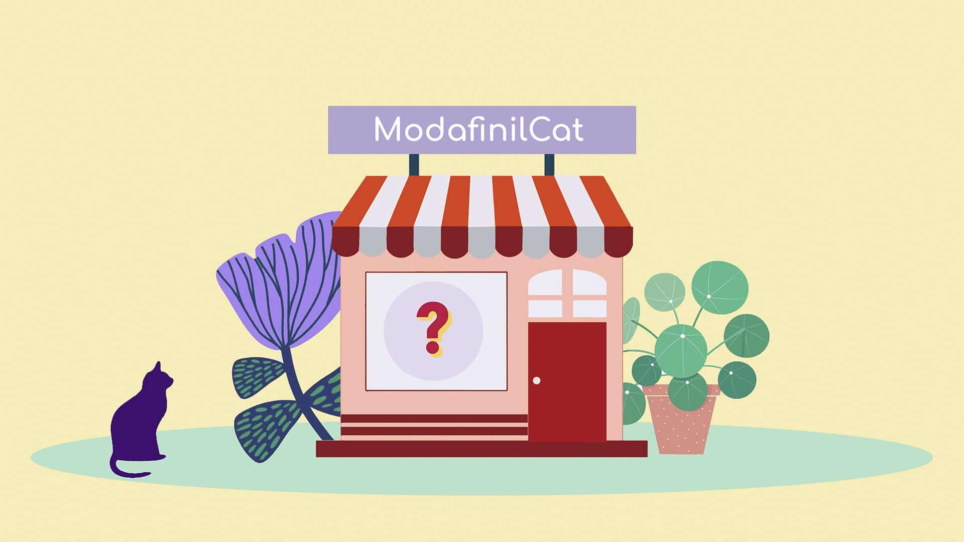 ModafinilCat